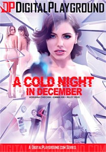A Cold Night In December – Digital Playground