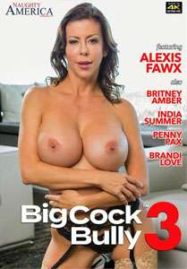 Big Cock Bully #3 – Naughty America