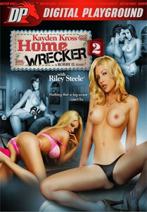 Home Wrecker #2 – Digital Playground