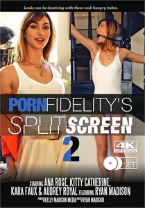 Split Screen #2 – Porn Fidelity